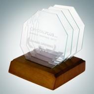 Octagon Jade Glass Coaster